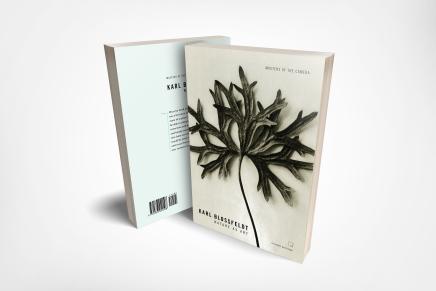 Book Design 3D Mockup