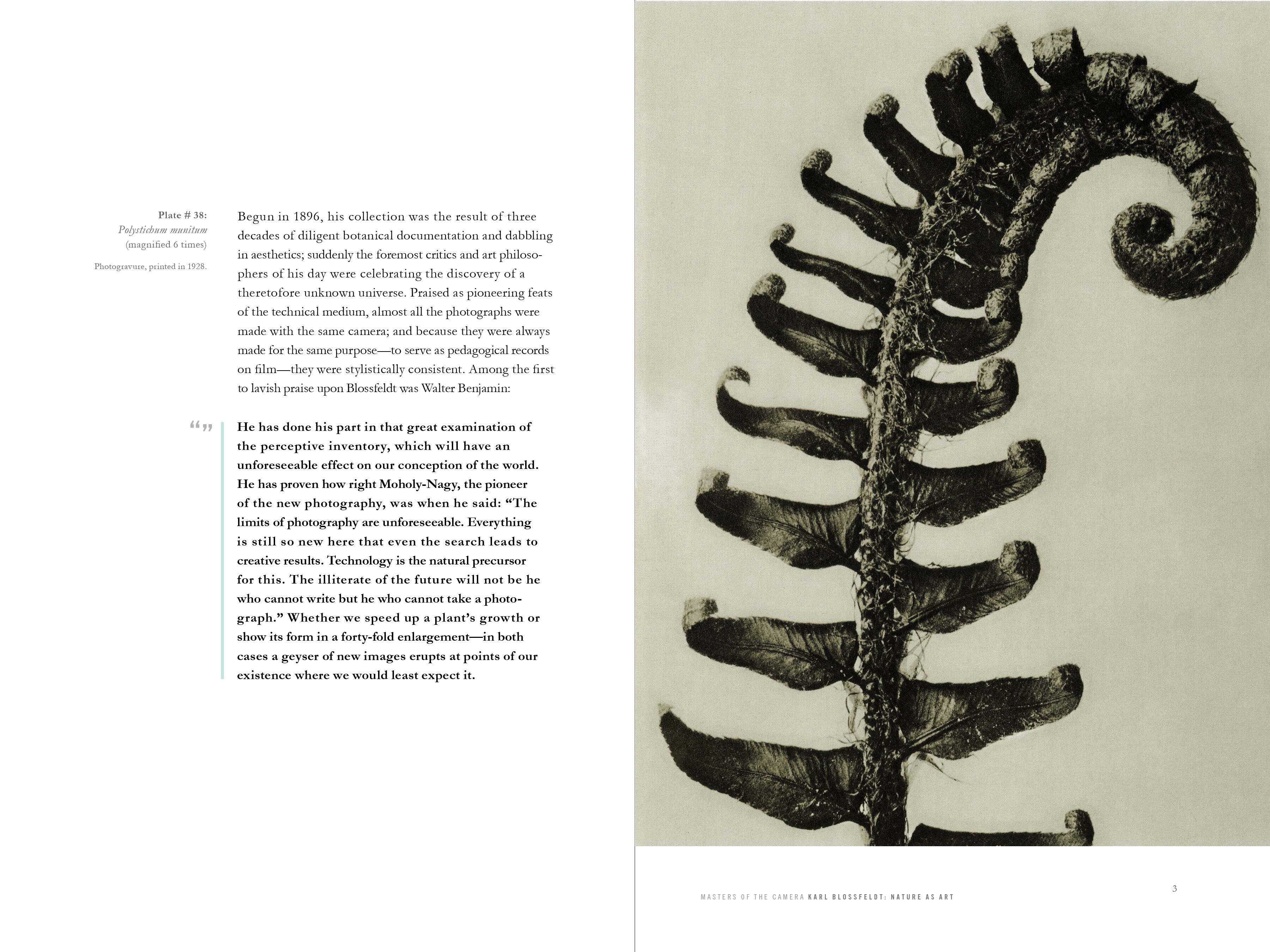 Book Design Page