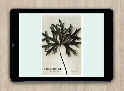 eBook Design Cover
