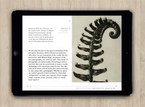 eBook Design Page